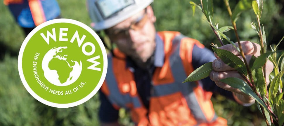 VINCI Environment Awards WE NOW logo on blurred background with high-vis person holding twig with leaves to camera